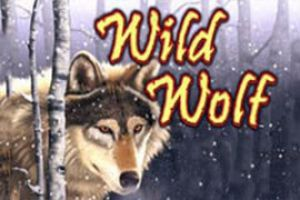 Wild Wolf Slot Online From IGT review